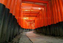 Photo of Explore Fushimi Inari