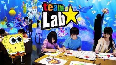Photo of Sketch Aquarium: el acuario virtual para los más pequeños