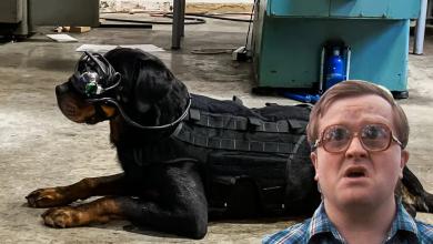 Photo of Doggles: Las gafas de realidad mixta para perros