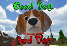 Photo of Good Dog, Bad Dog ya disponible en Europa para PSVR