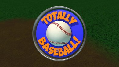 Photo of Análisis de Totally Baseball para Oculus quest